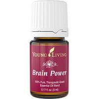 Brain Power - Сила Ума