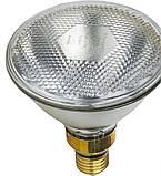 Защитный абажур с переключателем Schal, кабель 2.5м, для инфракрасных ламп FARMA (Нидерланды), фото 8