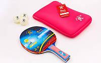 Набор для настольного тенниса 1 ракетка, 2 мяча с чехлом Giant Dragon 4* Offensive (древесина) 8041 PZ-MT-6540