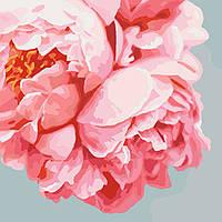 """Картина по номерам. Букеты """"Розовые пионы""""  40*40см KHO3035"""