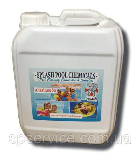 Рідкий засіб без запаху проти водоростей для басейну Сплеш Альгіцид 5 л