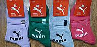 """Жіночі стрейчові шкарпетки в стилі """"Puma DS"""" Туреччина, 36-41, фото 1"""