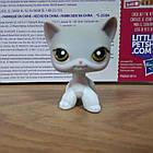 Lps littlest pet shop стоячки - лпс кошка Hasbro 138 -старая коллекция, фото 2