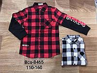 Рубашки на мальчика, Glo-story, 110,140,160 см,  № BCS-8465