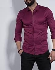 Рубашка мужская приталенная, длинный рукав. Турция S, M, XL Молодежная турецкая рубашка. Марсал, фото 2