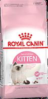Сухой корм Royal Canin Kitten Роял Канін Кіттен сухий для кошенят від 4 до 12 місяців 2 кг