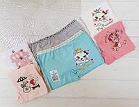 Детские трусики шортики для девочек 3-4 лет 65581623785