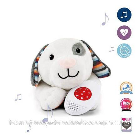 Музыкальная мягкая игрушка Zazu собачка Dex с белым шумом, фото 2