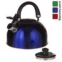 Чайник со свистком и двойным дном 2,5 л, нержавейка, для газовой плиты, фото 1