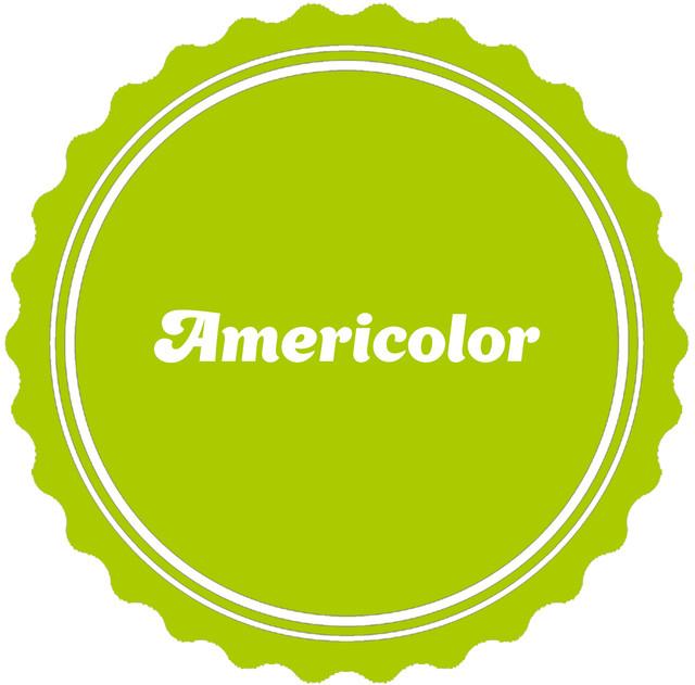 Красители для шоколада Americolor (США)