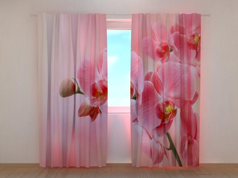 "Фото шторы ""Розовая орхидея"" 250 х 260 см"