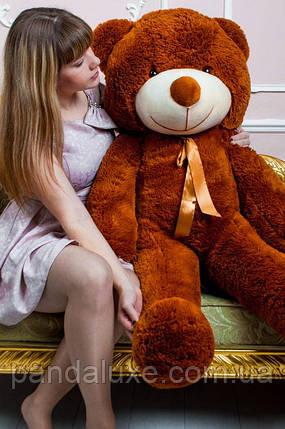 """Мягкая игрушка плюшевый мишка """"Нестор"""" большой медведь 120см, фото 2"""