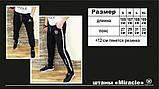 Спортивные штаны Miracle - Lampholder/19, фото 4