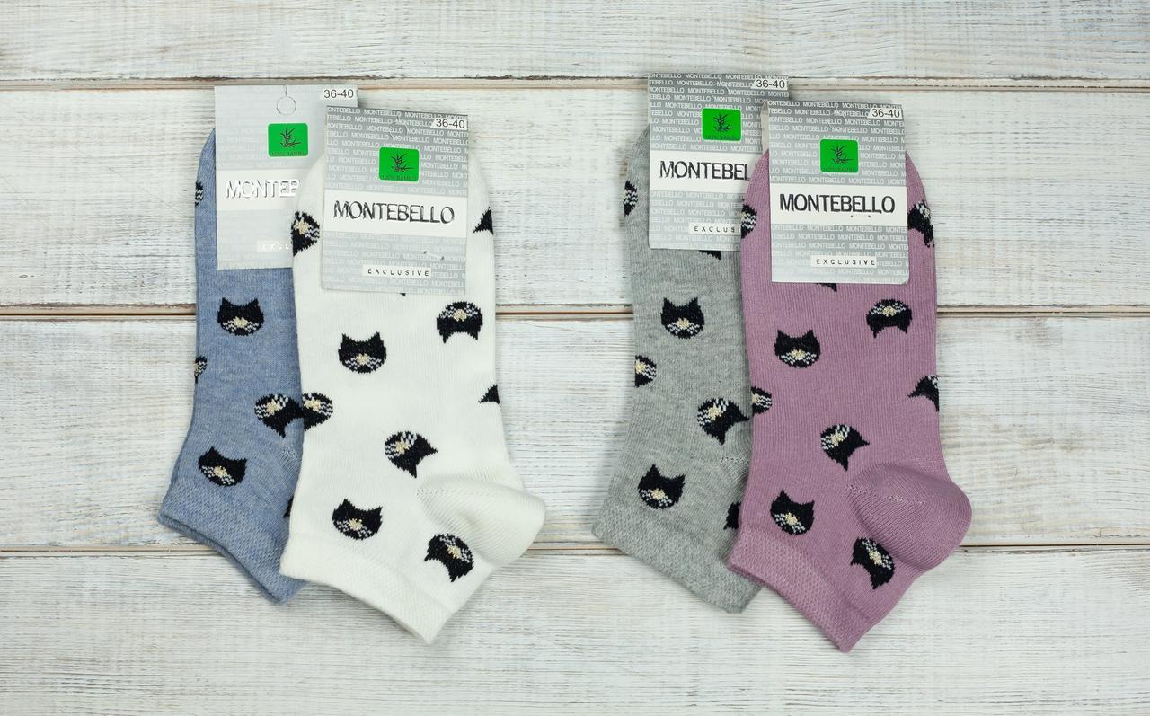 Жіночі шкарпетки сіточка носки стрейчеві Montebello з малюнком личко кицьки 35-40 12 шт в уп мікс 4 кольорів