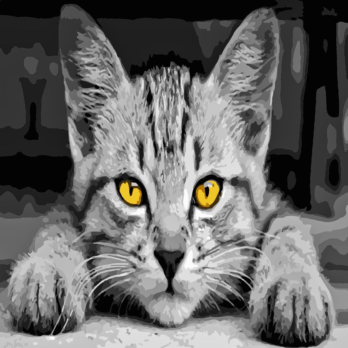 Художественный творческий набор, картина по номерам Серый кот, 40x40 см, «Art Story» (AS0502)
