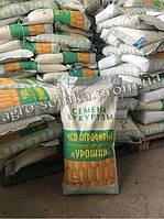 Семена кукурузы ЯРОВЕЦЬ 243 МВ ФАО 240)