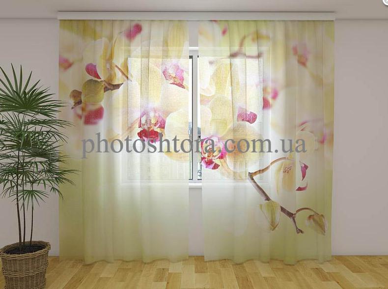 Фото Тюль Золотистые орхидеи 250 см х 260 см