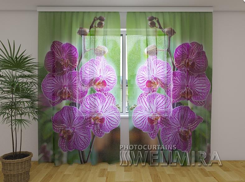 Фото Тюль Вавилонская орхидея 250 см х 260 см