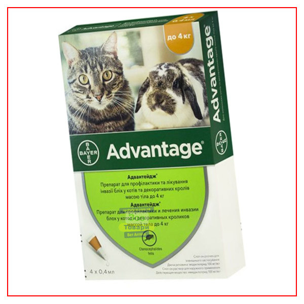 Bayer Адвантейдж 40 - для кошек и котят менее 4 кг - 1 пип-ка