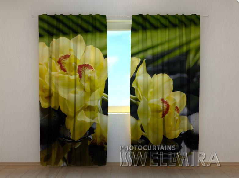 """Фотошторы """"Солнечная орхидея"""" 250 х 260 см"""