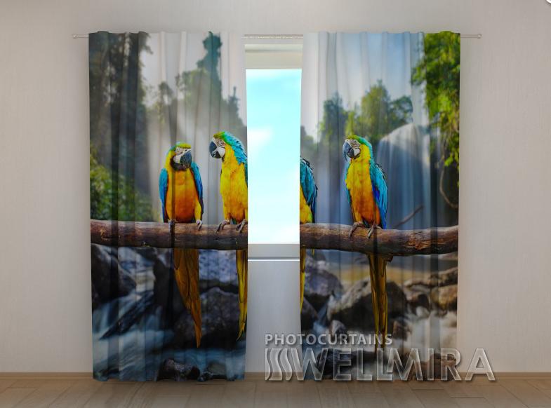 """Фотошторы """"Три папуги"""" 250 х 260 см"""