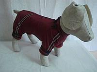 Комбинезон для собаки утепленный (флис)