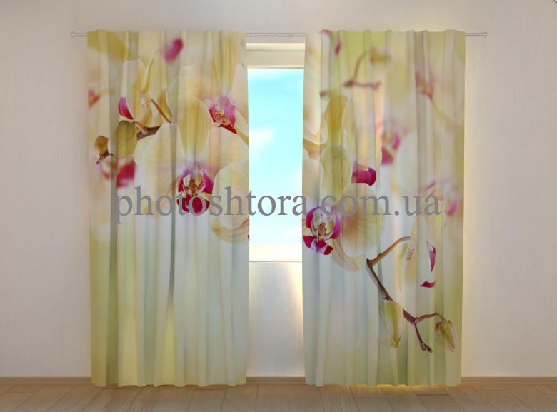 """Фото штори """"Золотистые орхидеи"""" 250 х 260 см"""