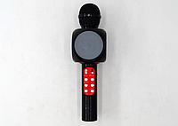Микрофон караоке   WSTER WS-1816