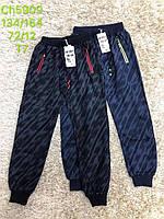 Спортивные брюки для мальчиков S&D оптом, 134-164 рр. Артикул: CH5909