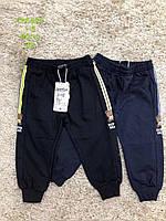 Спортивные брюки для мальчиков S&D оптом, 1-5 лет. Артикул: CH5920