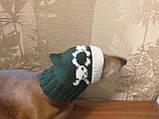 Шапка для собаки череп с костями, фото 4