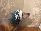 Шапка для собаки череп с костями, фото 3