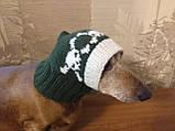 Шапка для собаки череп с костями, фото 7