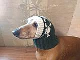 Шапка для собаки череп с костями, фото 8