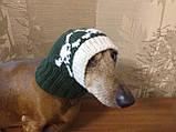 Шапка для собаки череп с костями, фото 9