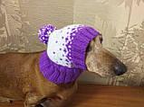 Зимняя шапка для маленькой собаки,шапка для собаки, фото 9