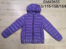 Куртка для девочек Glo-Story оптом, 110/116-158/164 рр.