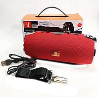 Портативная колонка JBL Xtreme Small mini (AUX/MicroSD/USB/BT) красная
