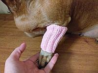 Леггинсы для маленькой собаки,теплые лапы собаки, фото 1