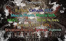 Поступление: BioTech, Cellucor, MST, Muscle Pharm, MuscleTech, MUST, MyProtein, NOW, Nutrex, Puritan's Pride, SAN, Scivation (Xtend), Syntrax. Обновлен раздел Уценка.