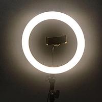 ✅Кольцевая лампа 26 см на штативе 2м. Светодиодное кольцо со штативом
