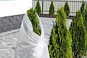 Агроволокно белое Presto-PS (спанбонд) плотность 19 г/м, ширина 3,2 м, длинна 100 м (19G/M 32 100), фото 5