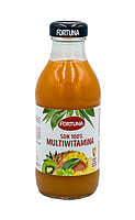Сок Fortuna Мультивитамин 300 мл