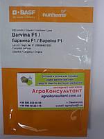 Семена огурца Барвина F1 (Nunhems) 500 семян партенокарпик, ранний гибрид (40-45 дней)