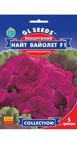 Семена Пеларгония Найт Вайолетт, фото 2