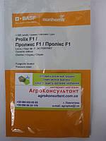 Семена огурца Проликс F1 (Nunhems) 1.000 семян среднеранний партенокарпический крупнобугорчатый гибрид
