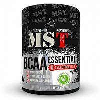 MST Sport Nutrition, Бцаа BCAA Essential with Electrolytes, 480 грамм