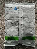 Шавіт Ф фунгіцид в. р. 1 кг Adama/ Адама (Ізраїль), фото 2