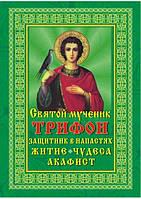 Святой мученик Трифон, защитник в напастях. Житие, чудеса, акафист