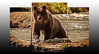 """Модульная картина """"Медведь"""""""